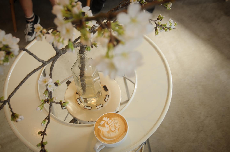 晴れですね🌞桜もそろそろ咲き始めますかね.本日の焼菓子は、ウィークエンドシトロン🍋あん塩スコーンバナナブレッドチョコナッツクランブルマフィン.数は少なくなってますお早めにどうぞ♀️.コーヒーも美味しいの沢山焼けてます️面白い豆も入ってきてるのでぜひ試してくださいね🤤.本日もお待ちしてます🦍
